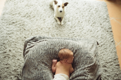 Babies and their pets are just adorable